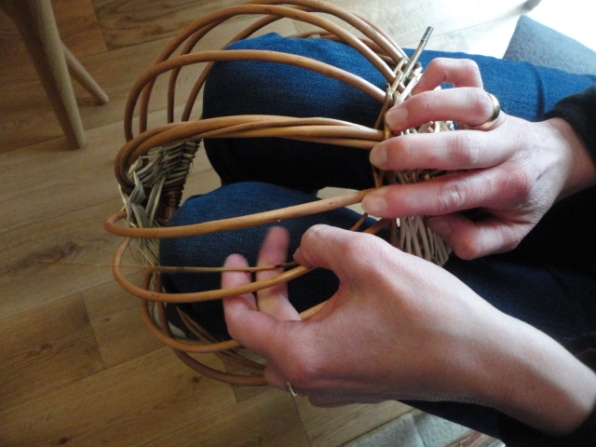 Work in progress-All ribs inserted and fine weavers randed over one under one with basket upside down.