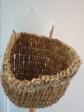 Black oat straw Kishie